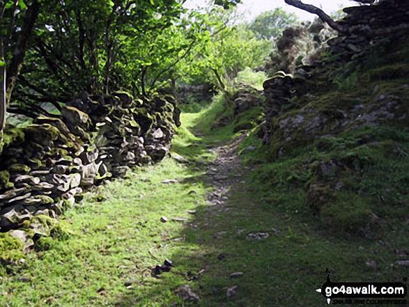 Footpath near Ty Mawr Wybrnant