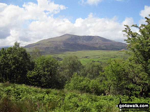 Carnedd Moel Siabod from the lower slopes of Drosgol (Bwlch y Groes)