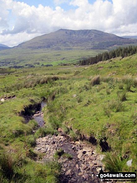 Carnedd Moel Siabod from Afon Bwlch y Groes on the lower slopes of Drosgol (Bwlch y Groes)