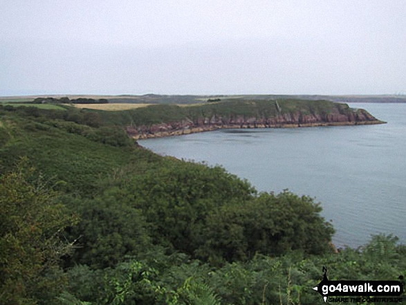 Dale Point, St Ann's Head, Pembrokeshire Coast