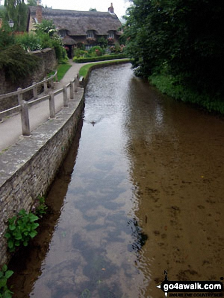 Dalby Beck in Thornton-le-Dale