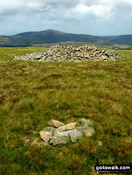 Cushat Law summit cairn and shelter with The Cheviot in the distance