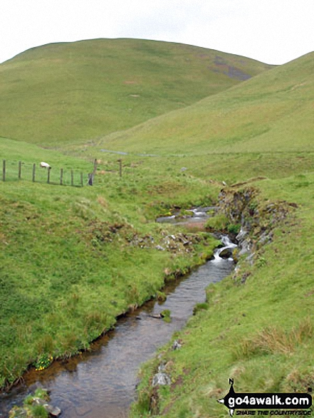 Rowhope Burn. Walk route map n157 Swineside Law and Windy Gyle from Wedder Leap, Barrowburn photo