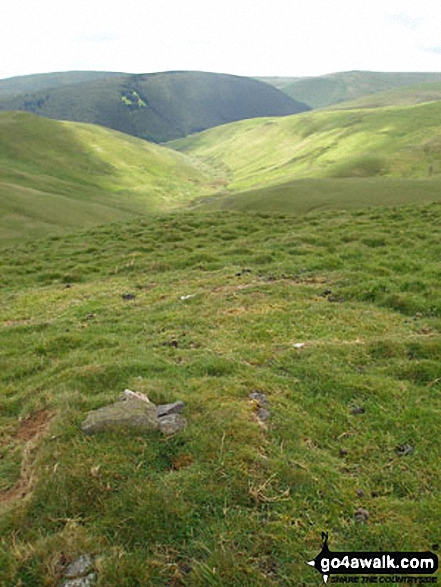 Swineside Law (left) and Black Braes (right) with Mozie Law (back left) and Windy Gyle (back right) from Hindside Knowe. Walk route map n157 Swineside Law and Windy Gyle from Wedder Leap, Barrowburn photo