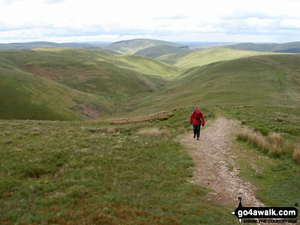 Climbing 'The Street' between Swineside Law and Hindside Knowe