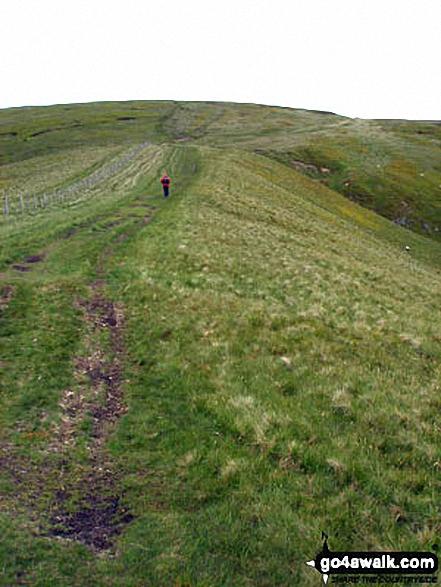 Climbing Windy Gyle via the Pennine Way. Walk route map n157 Swineside Law and Windy Gyle from Wedder Leap, Barrowburn photo