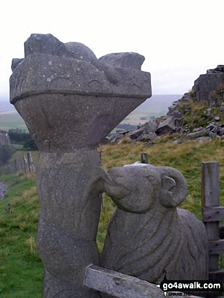 Detail of unusual Sheep and Dove scultured stile west of Holwick Scars