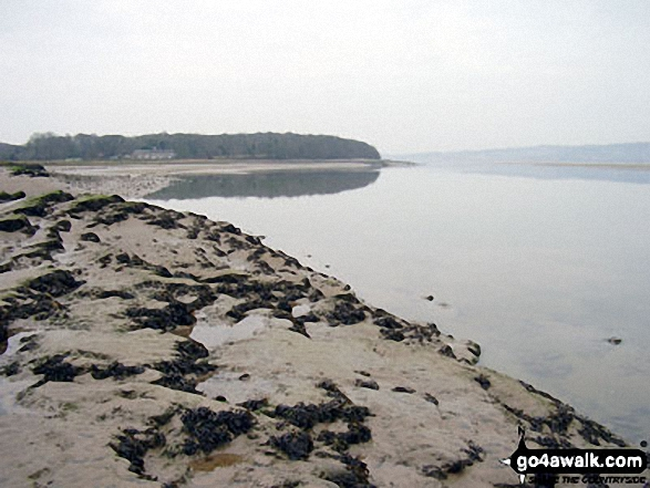 Not a breath of wind on Arnside Sands, Morecambe Bay. Walk route map c353 Holme Fell and Black Fell (Black Crag) from Tom Gill photo