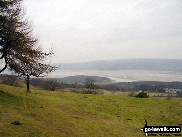 Morecambe Bay from the summit of Arnside Knott