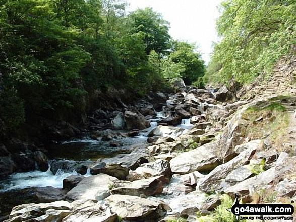 Afon Abergaslyn nr Beddgelert