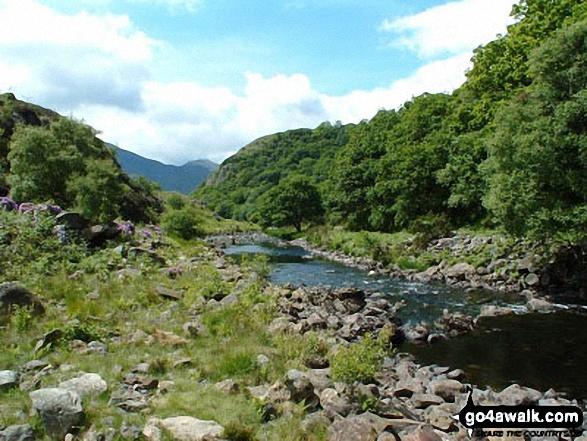 Afon Colwyn from Llyn Dinas