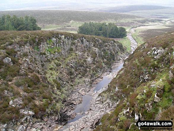 Force Burn Gorge