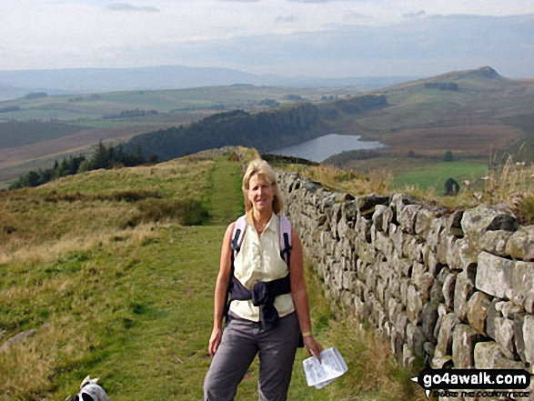 On Hadrian's Wall between Hotbank and Housesteads