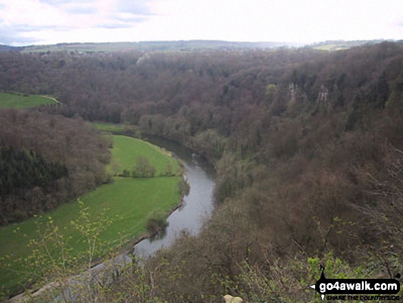 The River Wye Coldwell Rocks from Symonds Yat Rock