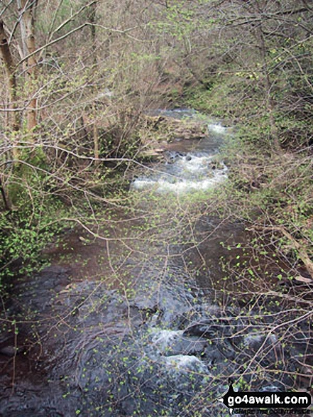 Grwyne Fechan near Llanbedr
