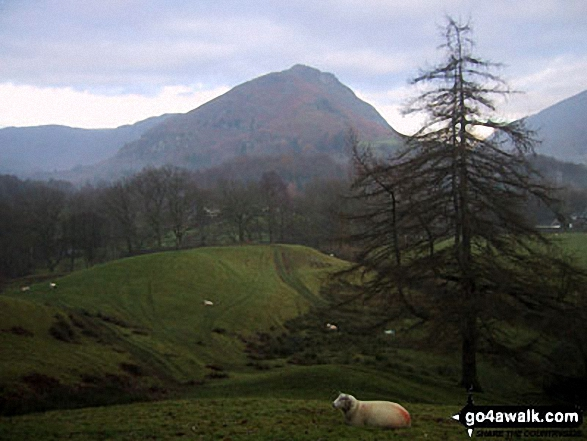 Helm Crag from Grasmere. Walk route map c266 Seat Sandal and Fairfield from Grasmere photo