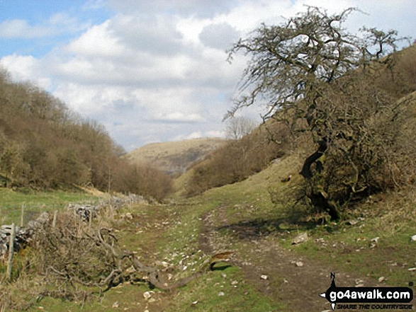 Looking North along Deep Dale. Walk route map d270 Monsal Head, Monsal Dale and Deep Dale from Ashford in the Water photo