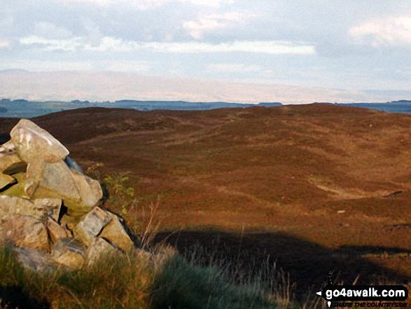 Wallow Crag (Naddle Forest) summit cairn