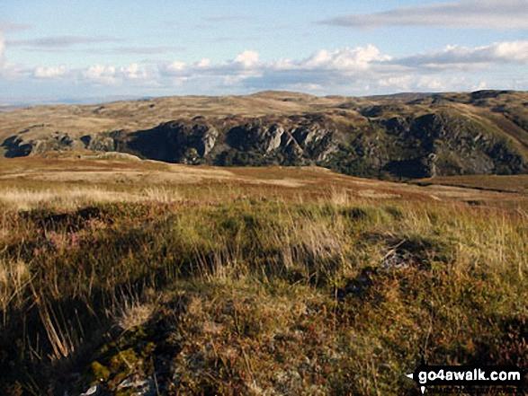 Powley's Hill summit