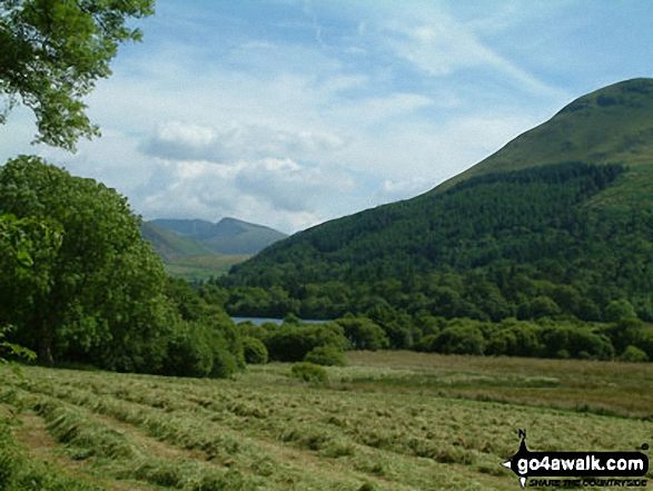 Hay field by Loweswater. Walk route map c275 Darling Fell, Low Fell and Fellbarrow from Loweswater photo