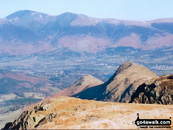 Walk c100 The Newlands Horseshoe from Hawes End - Cat Bells (Catbells) and Skiddaw from Maiden Moor