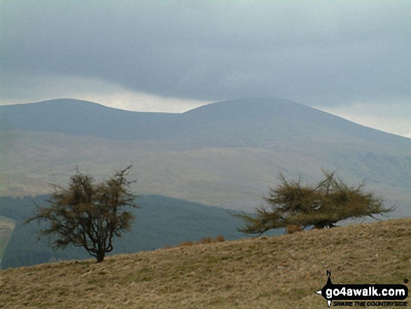 Gowbarrow Fell (Airy Crag) from Great Mell Fell