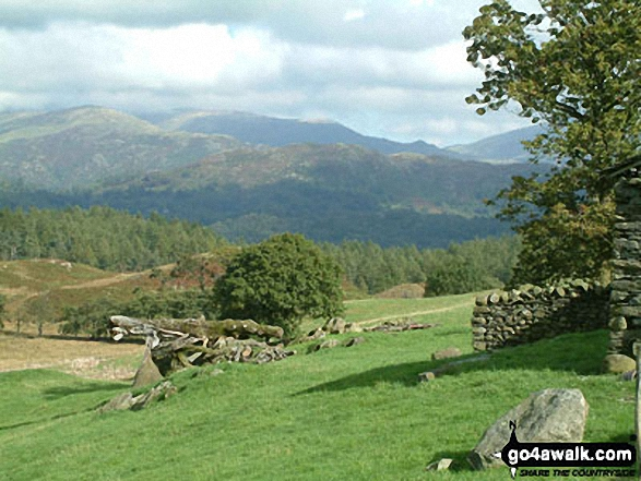 Loughrigg Fell from High Oxenfell Farm