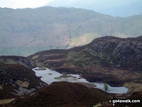 Lingmoor Tarn from Lingmoor Fell