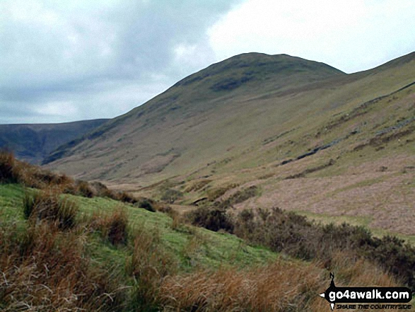 Hen Comb from Mosedale Beck