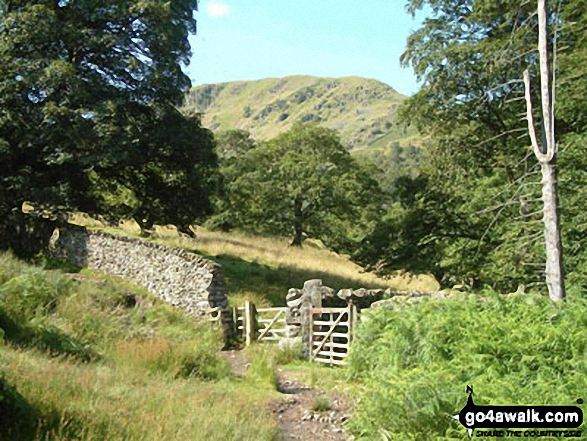 Path up to Arnison Crag from Patterdale