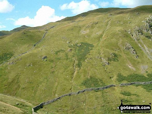 Birks from Arnison Crag