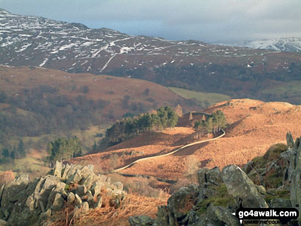 Descending Loughrigg Fell in winter light towards Rydal