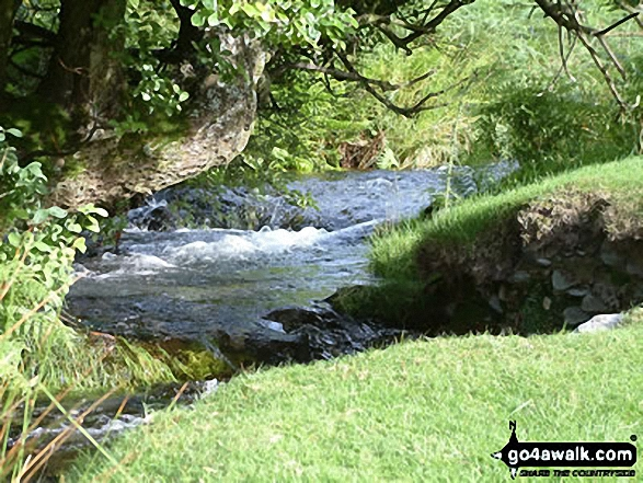 Squat Beck below Rannerdale Knotts