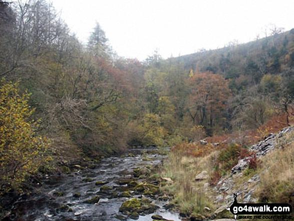 The River Twiss in Swilla Glen, below Thornton Force, The Ingleton Waterfalls