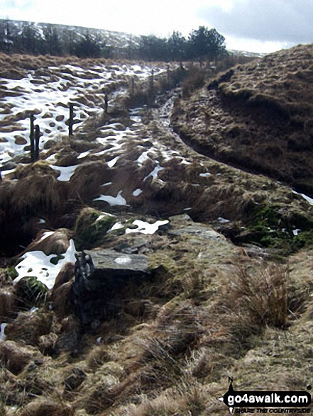 Ramsden Road between Rough Hill (Shore Moor) and Freeholds Top