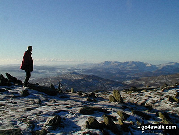 Walk Picture/View: Ill Bell Summit in The Far Eastern Fells, The Lake District, Cumbria, England by David Mulvey (5)