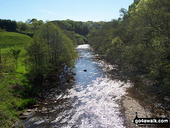 The River Coquet