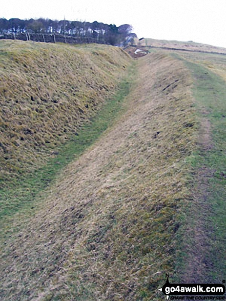A Ditch or a Vallum (still not sure which) near Halton Shields - Walking The Hadrian's Wall Path National Trail - Day 3