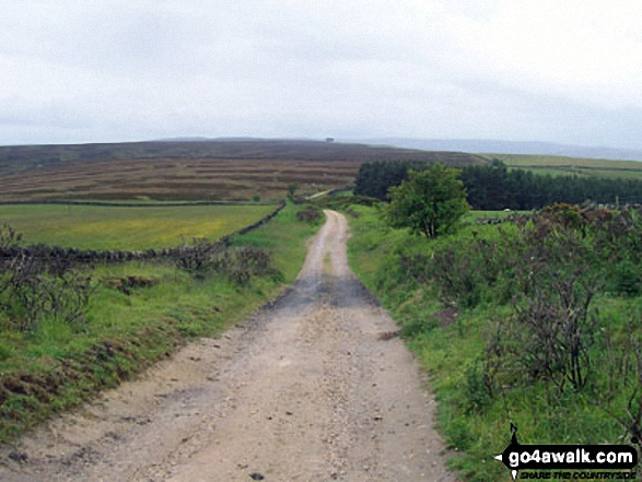 On The Weardale Way looking towards Elephant Trees