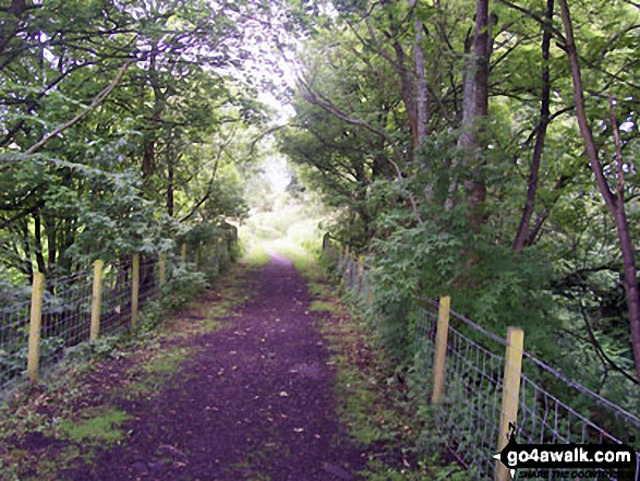 Path leading to the River Lune Viaduct