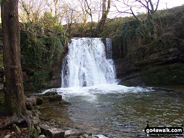 Janet's Foss near Malham