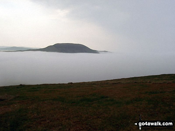 Hownam Law poking through the clouds during a Temperature Inversion from The St Cuthbert's Way on Wideopen Hill