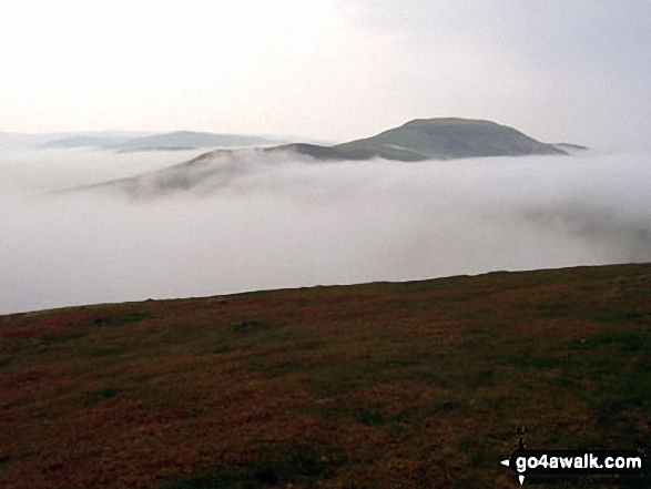 Hownam Law appearing through the mist during a Temperature Inversion from The St Cuthbert's Way on Wideopen Hill