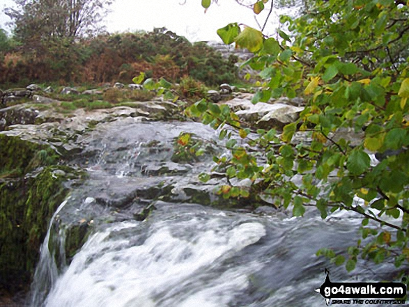 The top of Aira Force