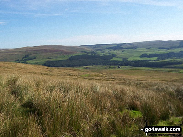 Walk n114 Grey Nag and Black Fell (Haresceugh Fell) from Gilderdale Bridge - View from Black Hill (Whitley Common)