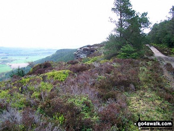 View NE from Thrunton Crag