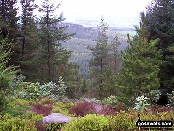 North from Thrunton Crag
