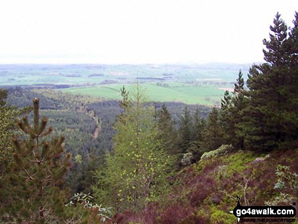 Looking North from Thrunton Crag