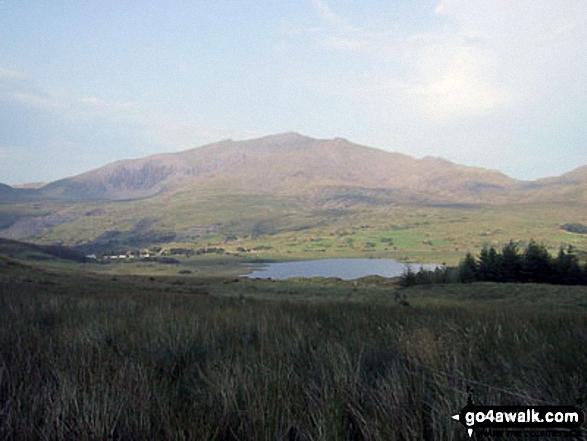 The Snowdon Massif - Garnedd Ugain (Crib y Ddysgl), Snowdon (Yr Wyddfa) & Y Lliwedd  beyond Llyn-y-Gader from Cwm Marchnad at the northern edge of Beddgelert Forest