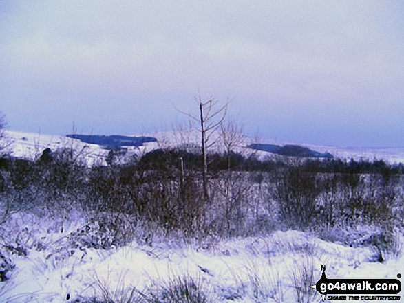 The Preseli Hills from Rosebush in the snow